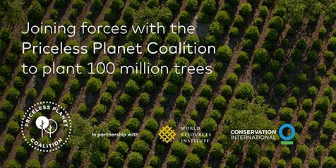 Joining forces with the Priceless Planet Coalition to plant 100 million trees